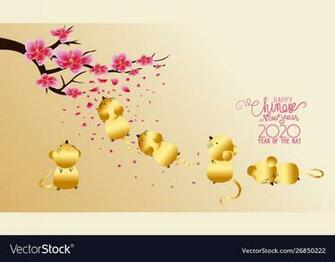 Chinese new year 2020 with blossom wallpapers Vector Image