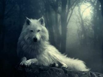 free download wolf hd wallpaper 1024768 For Desktop