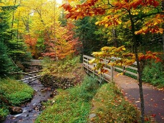 Beautiful Autumn wallpaper   wallpapers download wallpaper