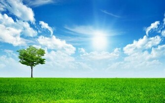 Nature Wallpapers BackgroundsPhotos Images and Pictures for