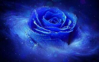 Hd 1280x800 Cool 3d Blue Rose Desktop Wallpapers Backgrounds