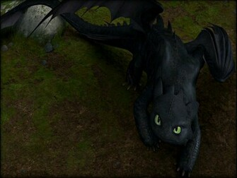 Toothless the Dragon images Toothless wallpaper photos