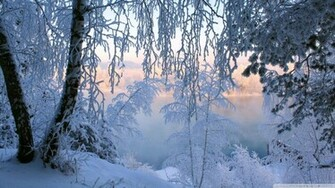 Beautiful Winter Frost Wallpaper 1920x1080 Beautiful Winter Frost