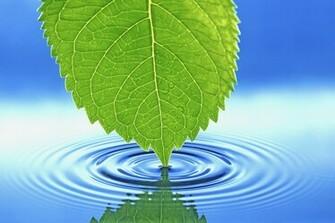 Pin Cool Nature Desktop Backgrounds