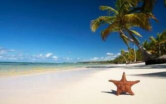 Tropical Beach Pictures Wallpapers
