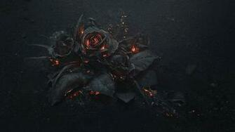 flowers Rose Fire Gothic Wallpapers HD Desktop and