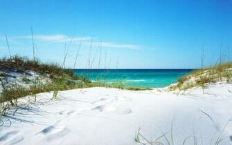 20723 white sanded beach in florida 1920x1200 beach wallpaperjpg