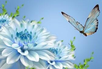 Butterfly Flower Nature 2521 Wallpaper Wallpaper hd