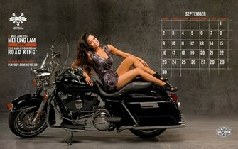 Harley Davidson Motorcycles Wallpaper 5   PhotosJunction