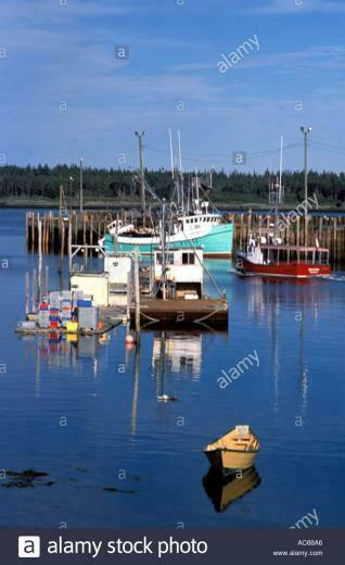 Dory fishing boats and aquaculture feeding platform with tour boat