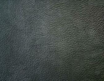 Black Elephant Skin Looks 12 Leather texture Texture packs