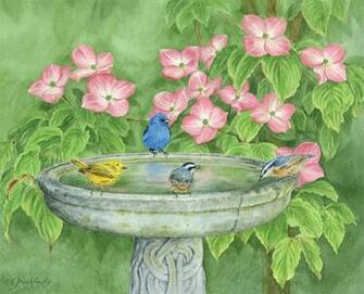 LANG Desktop Wallpapers June 2015 Birds In The Garden