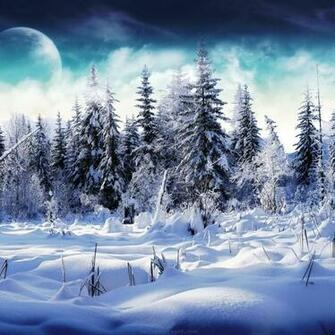 iPad Wallpapers Download 2012 Christmas Winter