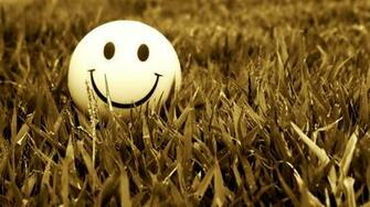 Grass Smiling 2048 1152 Wallpaper 2158365