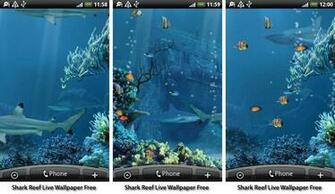 aquarium fish live wallpapers android shark reef live wallpaper free