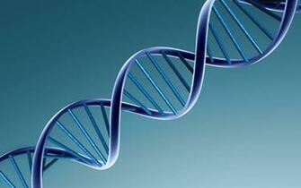 Dna Wallpaper High Resolution   WeSharePics