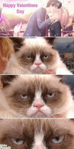 Grumpy Cat hates Valentines Day Funmole
