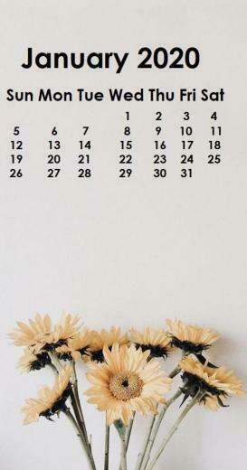 January 2020 iPhone Calendar Wallpaper in 2019 Calendar