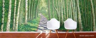 Birch Aspen Tree Wallpaper Murals Murals Your Way