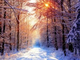 Winter Desktop Wallpapers and Backgrounds Wallpaper