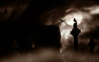 horror gothic raven cemetery graveyard halloween wallpaper background