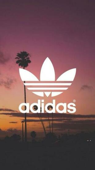 Adidas HD Wallpapers Backgrounds Wallpaper wallpapers