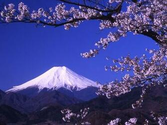 Mount Fuji Wallpaper 14   1024 X 768 stmednet
