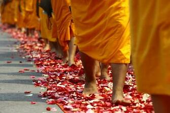 monk people walking on red and white flower petals image Peakpx
