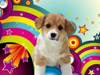 Puppies Wallpapers DownloadComputer Wallpaper Wallpaper