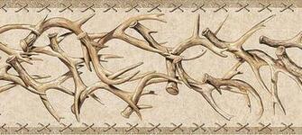 Details about WESTERN DEER ANTLERS Wallpaper Border TA39016B
