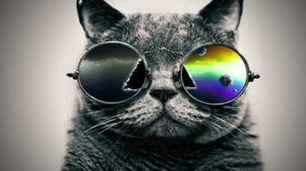 trippy cat wallpaper cool wallpapers share this cool wallpaper on