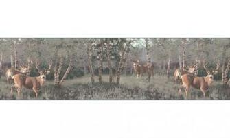Home Animal Borders Deer Moose Deers Wallpaper Border B2184PG