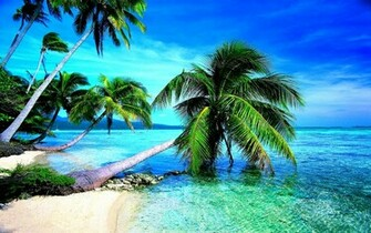 Tropical Beach HD Wallpaper Tropical Beach Images