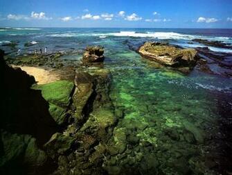 wallpaper other oceans and rivers JLM California La Jolla coast Shell