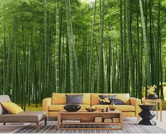 wallpapers Bamboo scenery of wallpapers Living Room of wall murals