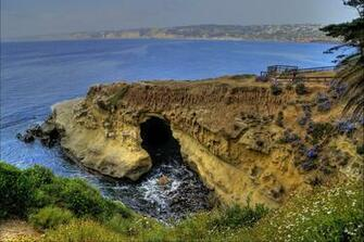 California La Jolla Usa Nature Wallpaper 102774