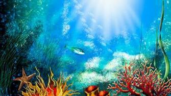 trololo blogg Hd Aquarium Wallpaper
