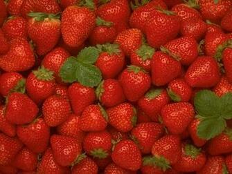Strawberry Wallpaper   Fruit Wallpaper 6102241