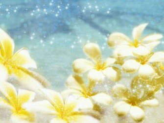 Download Wedding Flower Backgrounds and Wallpapers   Part 2   PPT