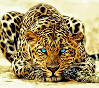 Most Beautiful Wallpapers Mobile Phone 2014 Download   shoutech