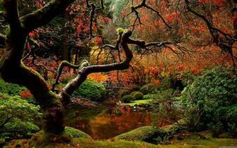 Japanese Garden Desktop Wallpapers