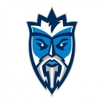 Lightning de Tampa Bay Logo Peinture