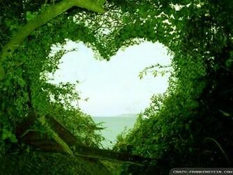 Download Beautiful Love Nature Wallpaper Full HD Wallpapers