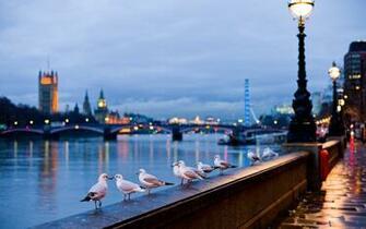 cole231245es bonitas Londres papel de parede   http