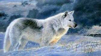 The gallery for   gt Grey Wolf Wallpaper Desktop