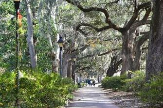 Savannah GA   Quintessence of the beautiful South   Traveler Photo