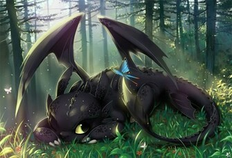 toothless Hiccup And Toothless Train Your Dragon and