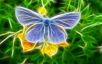 Colorful creative butterfly wallpaper   HD Wallpapers