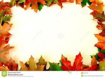 Autumn leaves on white background on border of photo