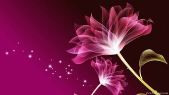 3D Pink Beautiful Flower Wallpaper High Resolution Wallpaper